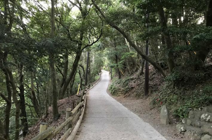 高尾山1号路だんだん坂が急になる