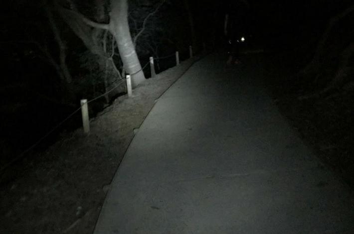 高尾山1号路の下山夜道