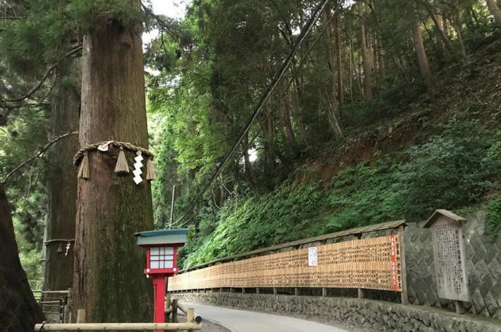 高尾山薬王院への道