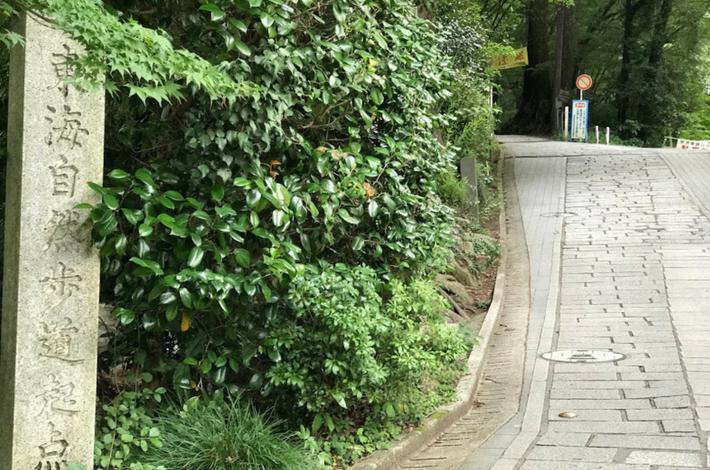 高尾山1号路のスタート地点