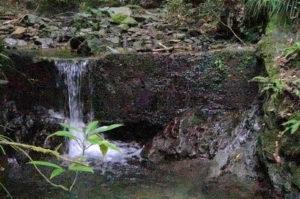 6gouroの小川から小さい滝のような水が流れる