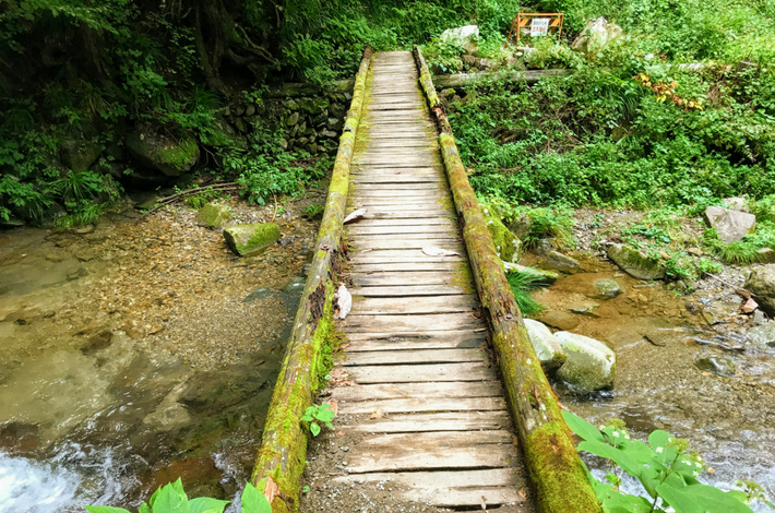 九頭竜の滝の木の橋