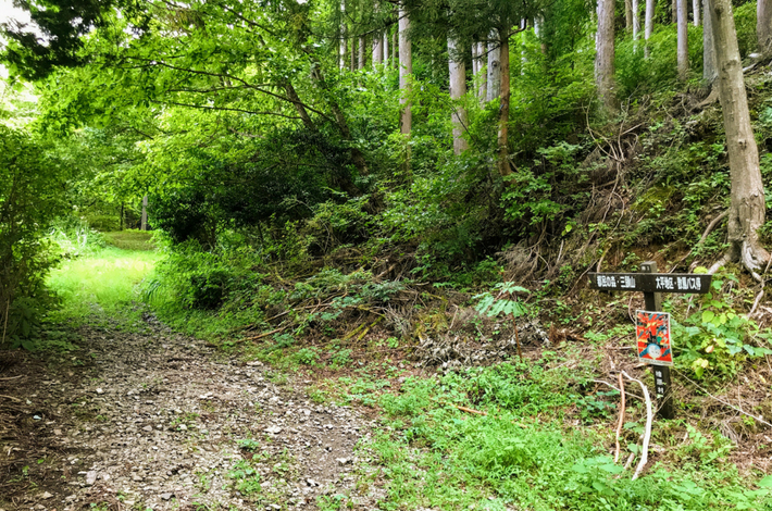 菅平の滝への道ー指標