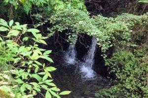 6号路小川の滝2つ