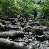 高尾山6号路の飛び石の道を登っている男性