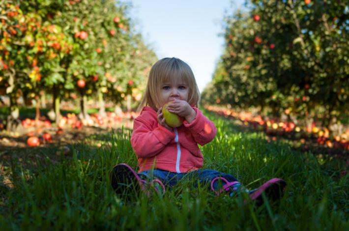 女の子が果物を食べている