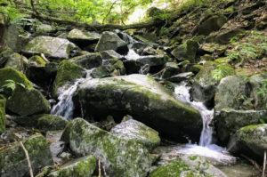 ブナの路の沢の様子 水が小さな滝のように流れている