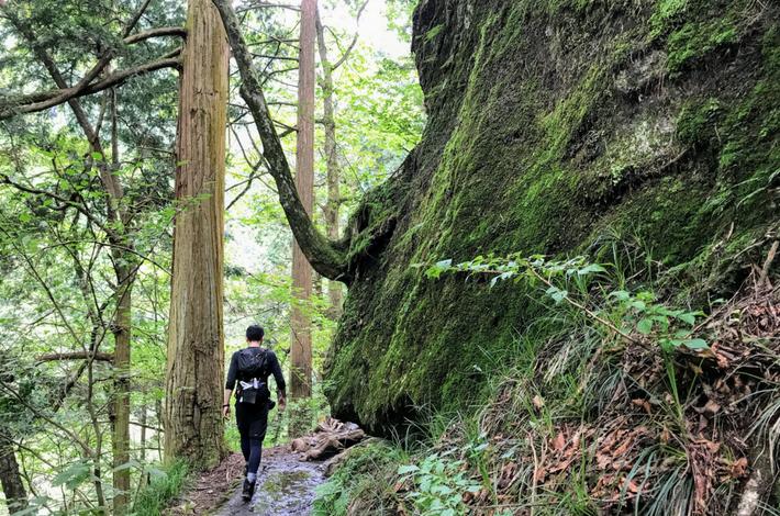 滝への道に大きな岩
