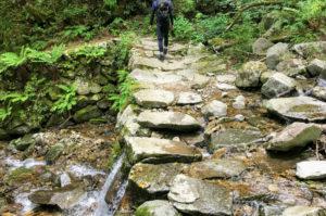 ブナの路の沢を石の橋でまた反対側に渡る