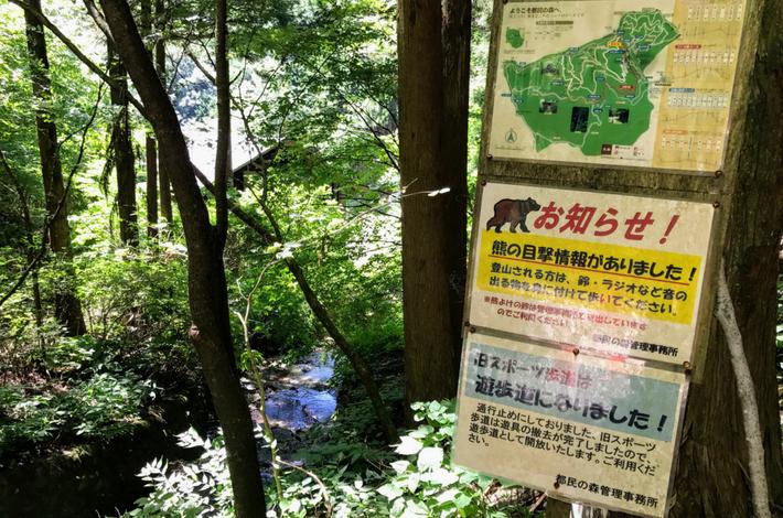檜原都民の森ー熊の看板