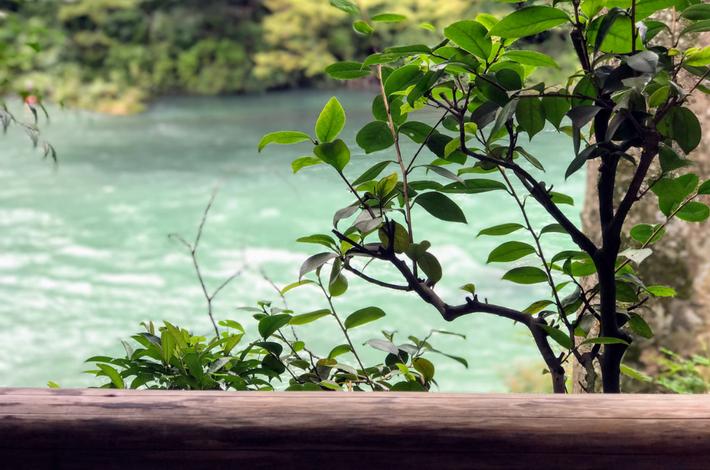 清流ガーデン 澤乃井園から多摩川を眺める