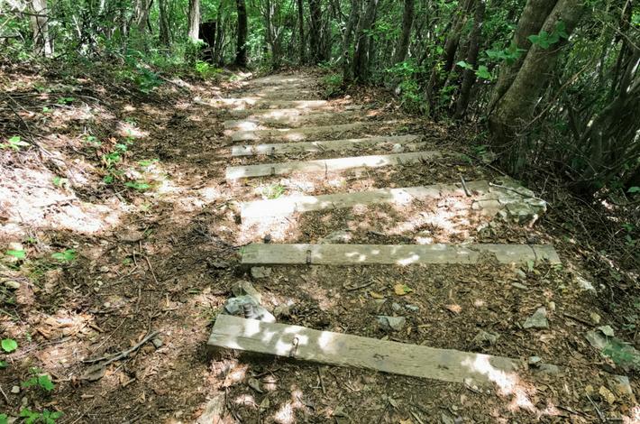 三頭山下山−木の階段