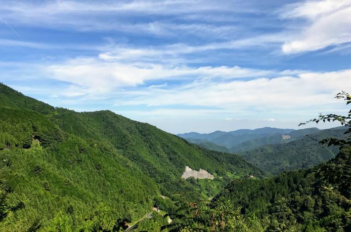 森林セラピーロードからの絶景