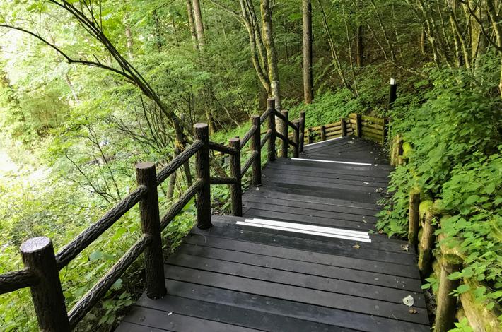 ゴールの途中まで続く木の階段