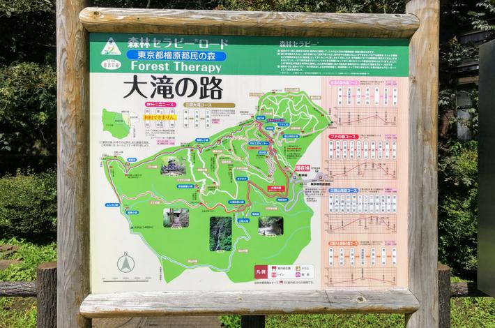 檜原都民の森のマップ