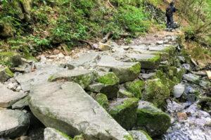 ブナの路の沢を石の橋で渡る
