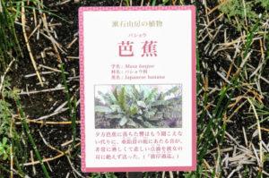 漱石山房記念館にある芭蕉の説明パネル2