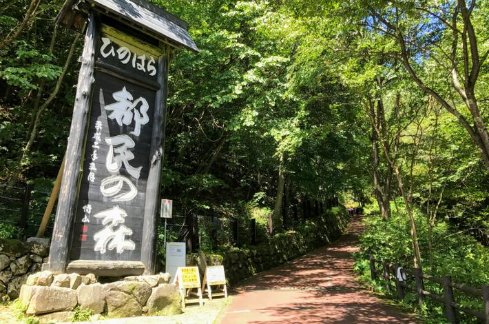 檜原都民の森の入口