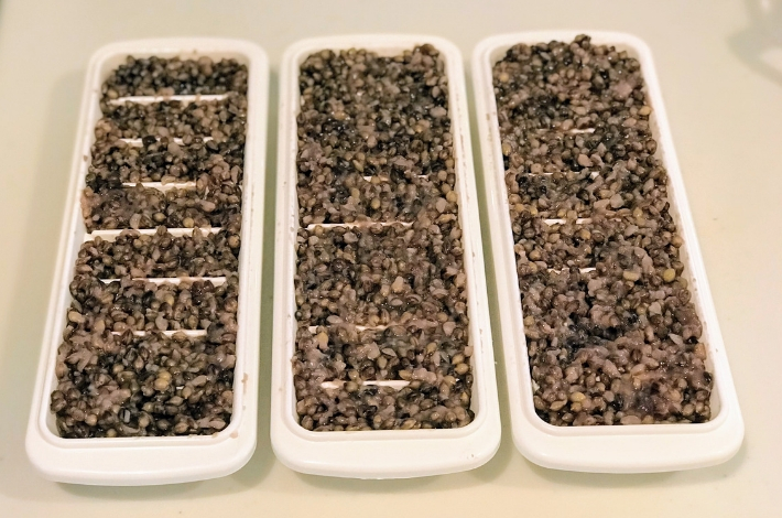 九州産紫もち麦のダイシモチが蒸し上がったら、製氷皿に3つに移し替える