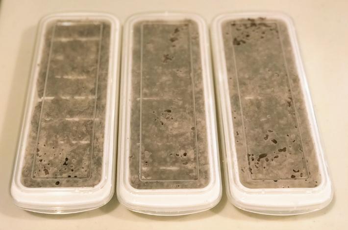 九州産紫もち麦のダイシモチが蒸し上がったら、製氷皿に3つに移し替え、蓋をしている