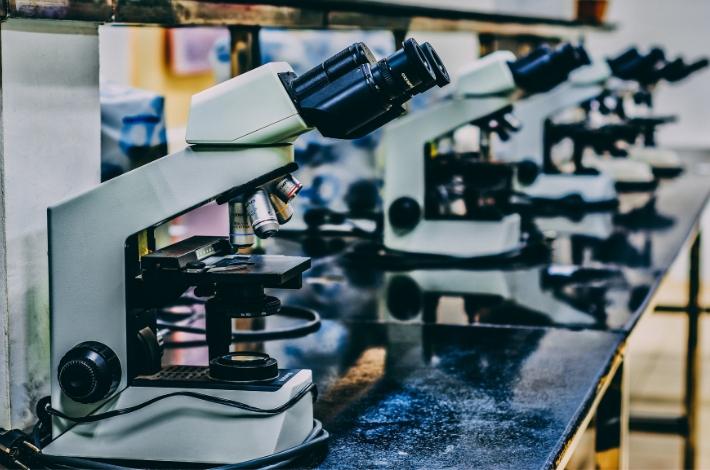 顕微鏡が複数ならんでいる状態