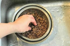 もち麦ダイシモチを軽く洗う